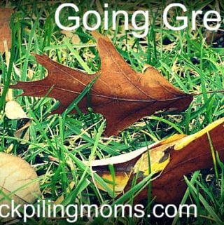 Going Green! – Batteries, the shocking truth!