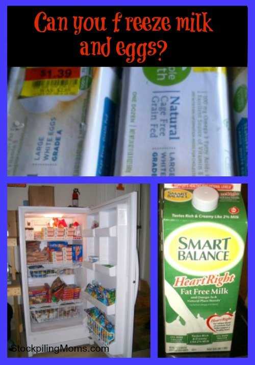 Can you freeze milk and eggs? Yes, you can! Check out this money saving tip!