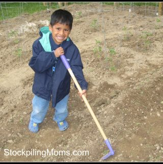 How to Garden Frugally