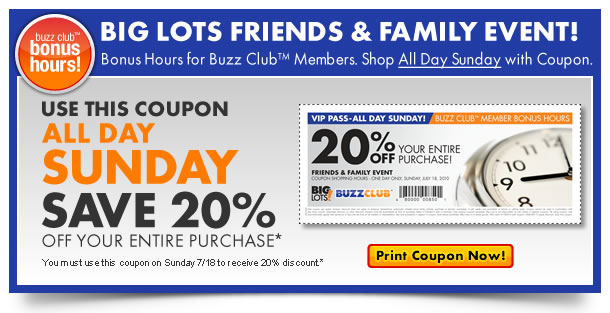 Big Lots Promo Codes Coupons Ninja Restaurant Nyc Coupons