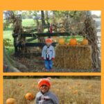 pumpkin patches in NKYCincinnati OH