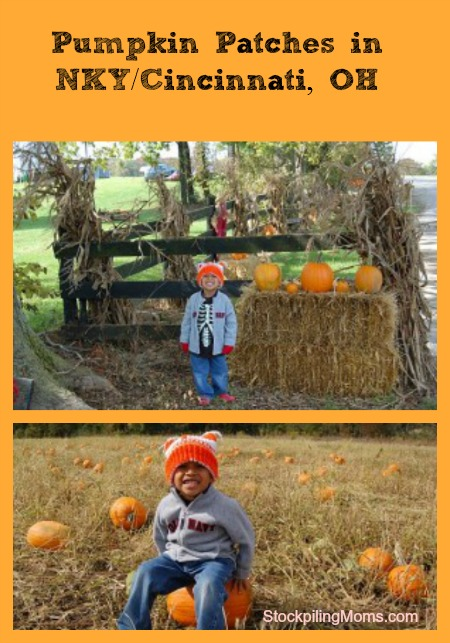 Pumpkin Patches in NKY/Greater Cincinnati