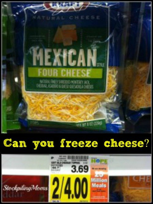 Can you freeze cheese? Yes, you can! Check out this money saving tip!