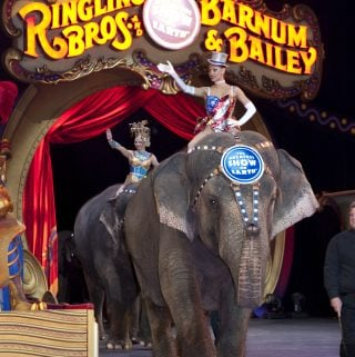 Ringling Bros. Blood Drive Ticket Offer