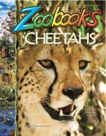 cover_zoobooks