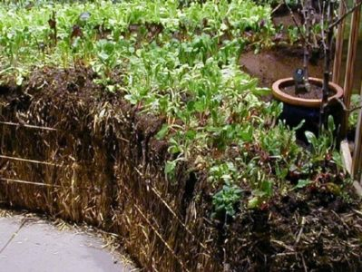 How to build a Strawbale Garden