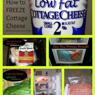 How To Freezer Cook Series – What foods can you freeze?