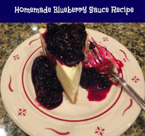 Fresh Blueberry SauceTopping Recipe