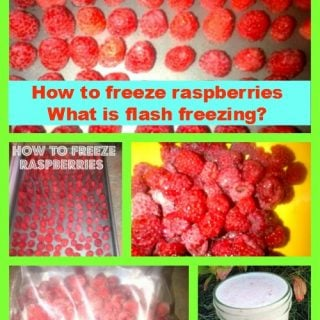 How to freeze raspberries – What is flash freezing?