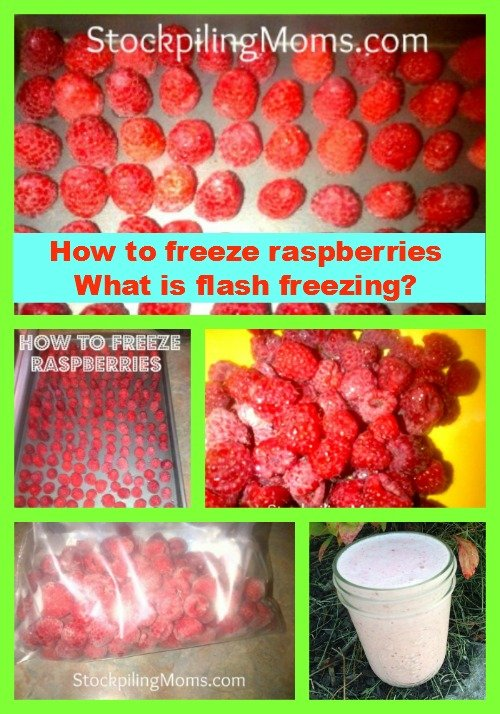 How do you flash freeze food? These tips will save you money!