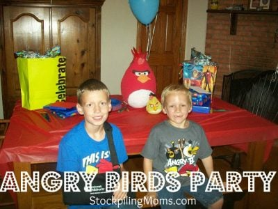 Angry Birds Birthday Party Ideas