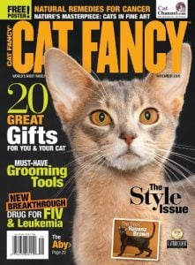 Cat-Fancy