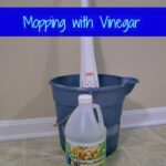 Mopping-with-Vinegar final