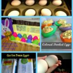 Egg Roundup for Easter
