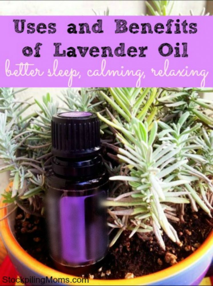 Uses and Benefits of Lavender Essential Oil