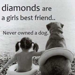 Do you love your dog?