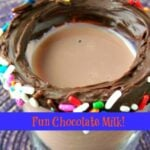 Fun-Chocolate-Milk-final