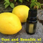 Uses and Benefits of Lemon Essential Oil