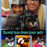 should you dress your pet