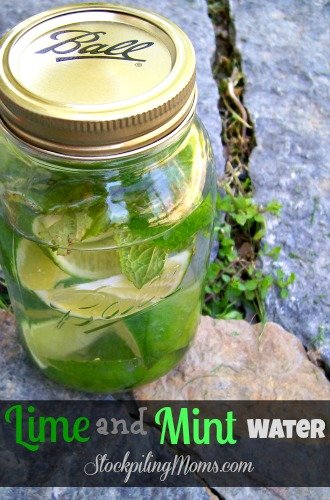 Lime and MInt Water is so refreshing and a great detox!