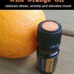 uses and benefits of wild orange essential oil 2