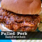Pulled Pork Sandwich2