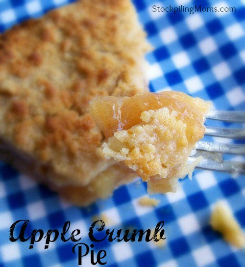 Apple Crumb Pie is DELICIOUS! So easy to make and an all american tradition.