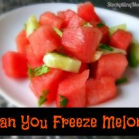 Can you freeze melon?