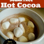 20 Calorie Sugar Free Hot Cocoa resized