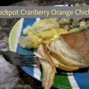 Crockpot Cranberry Orange Chicken3