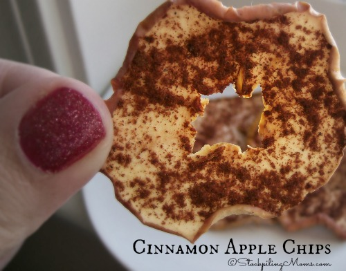 Cinnamon Apple Chips3
