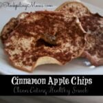 Cinnamon Apple Chips4