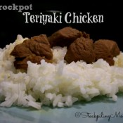Crockpot Teriyaki Chicken2