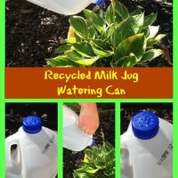 Recycled Milk Jug Watering Can