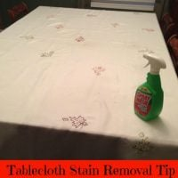 Tablecloth Stain Removal Tip
