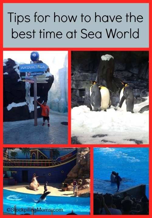 How to have the best trip to Sea World, Orlando Florida