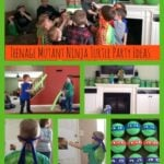 Teenage Mutant Ninja Turtle Party Collage