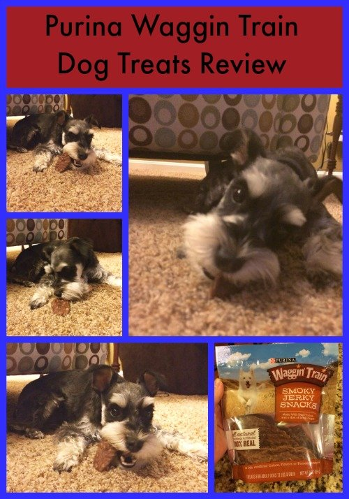 Purina Waggin Train Dog Treats