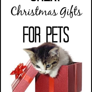 Great Christmas Gifts For Pets