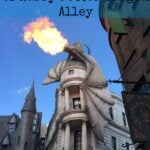 The Wizarding World of Harry Potter Diagon Alley 2
