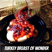 Turkey Breast of Wonder (Crockpot)