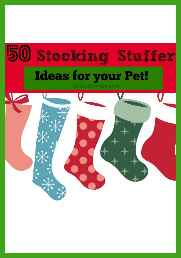 50 Stocking Stuffer Ideas For You Pet