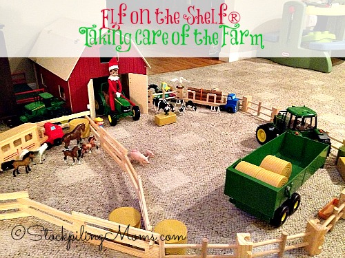 Elf on the Shelf® Taking Care of the Farm - Our elf is tending to the animals and working on the farm!