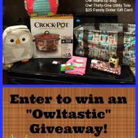 Owl Crock-Pot and Owltastic Giveaway – CLOSED