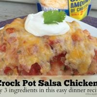 Crock Pot Salsa Chicken - Final Horizontal