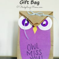 DIY Owl Miss You Gift Bag2