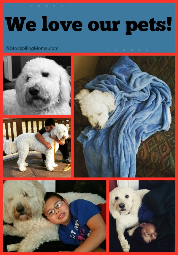 We love our pets! PetSmart Mother's Day Giveaway
