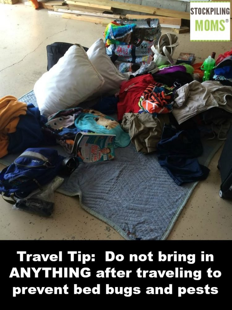 Travel tip do not bring in anything after traveling to for How do i prevent bed bugs