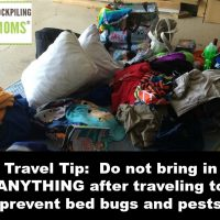 Travel Tip – Do not bring in ANYTHING after traveling to prevent bed bugs and pests