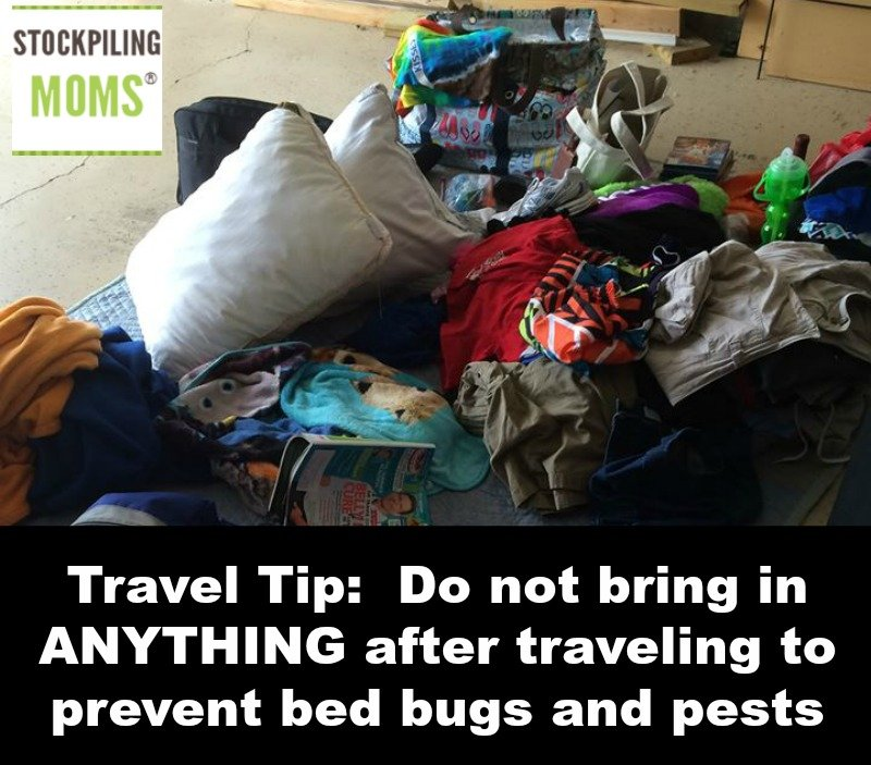 Travel Tip - Do not bring in ANYTHING after traveling to prevent bed bugs and pests